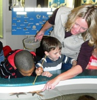 Touch Tank Feeding @ Museum of Coastal Carolina