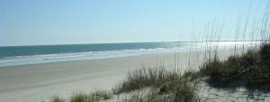 Ocean Isle Beach Shore Excursion @ Museum of Coastal Carolina