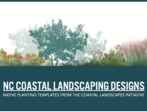 Sea Grants Coastal Landscapes Inspired by Nature @ Museum of Coastal Carolina