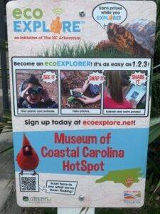 Citizen Science with ecoEXPLORE @ Museum of Coastal Carolina